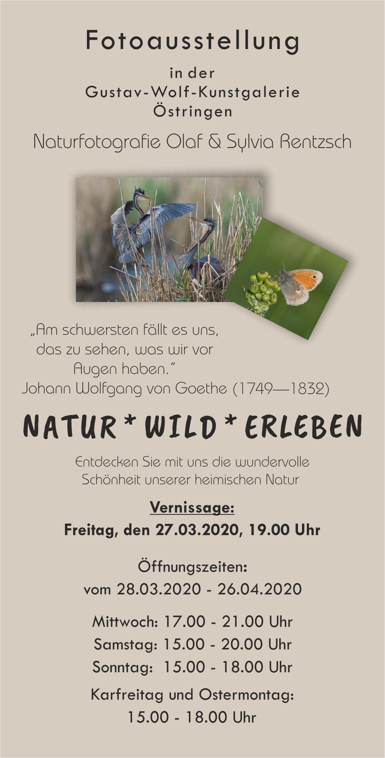 Flyer, fotoausstellung